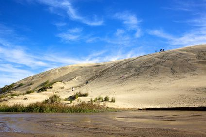 Dune Boarding at Te Paki Sand Dunes - the choice is yours on a self-organised trip to New Zealand.