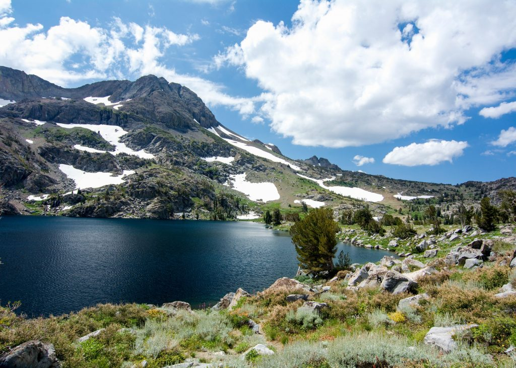 The Zest Car Rental Guide to 10 Top National Forests of